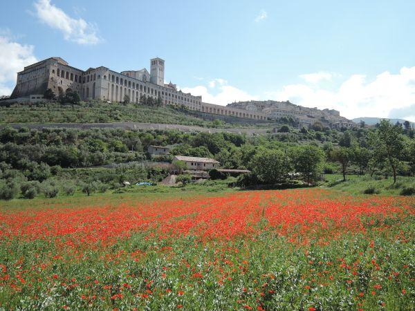 Assisi022_2