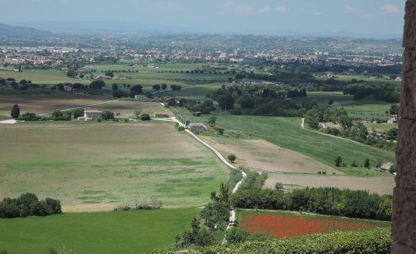 Assisi062